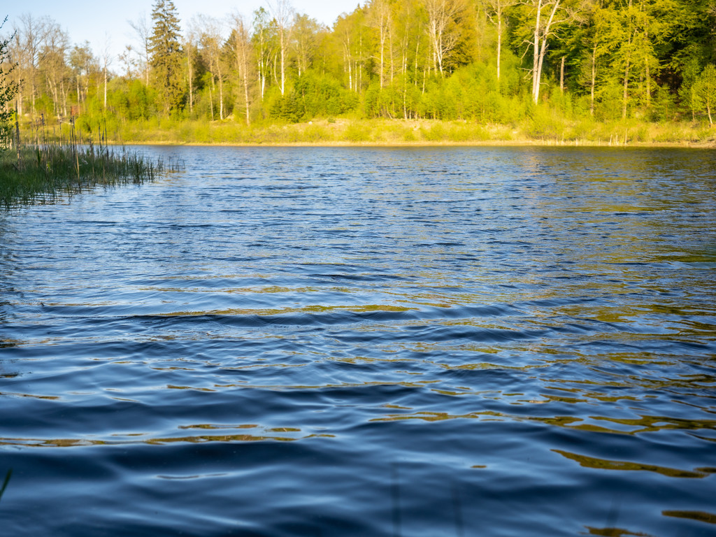 Egen sjö